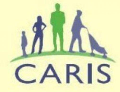 CARIS Organisational Review
